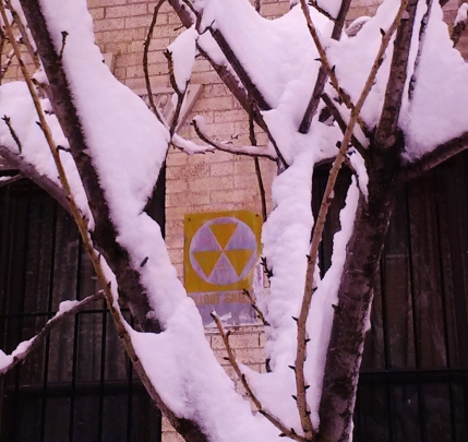 February Snow + Fallout Shelter