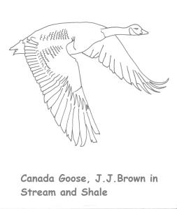 Canada Goose JJB